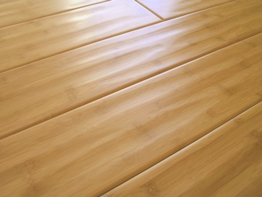 Xtreme Floors Bamboo Flooring Sales, Installation and Financing